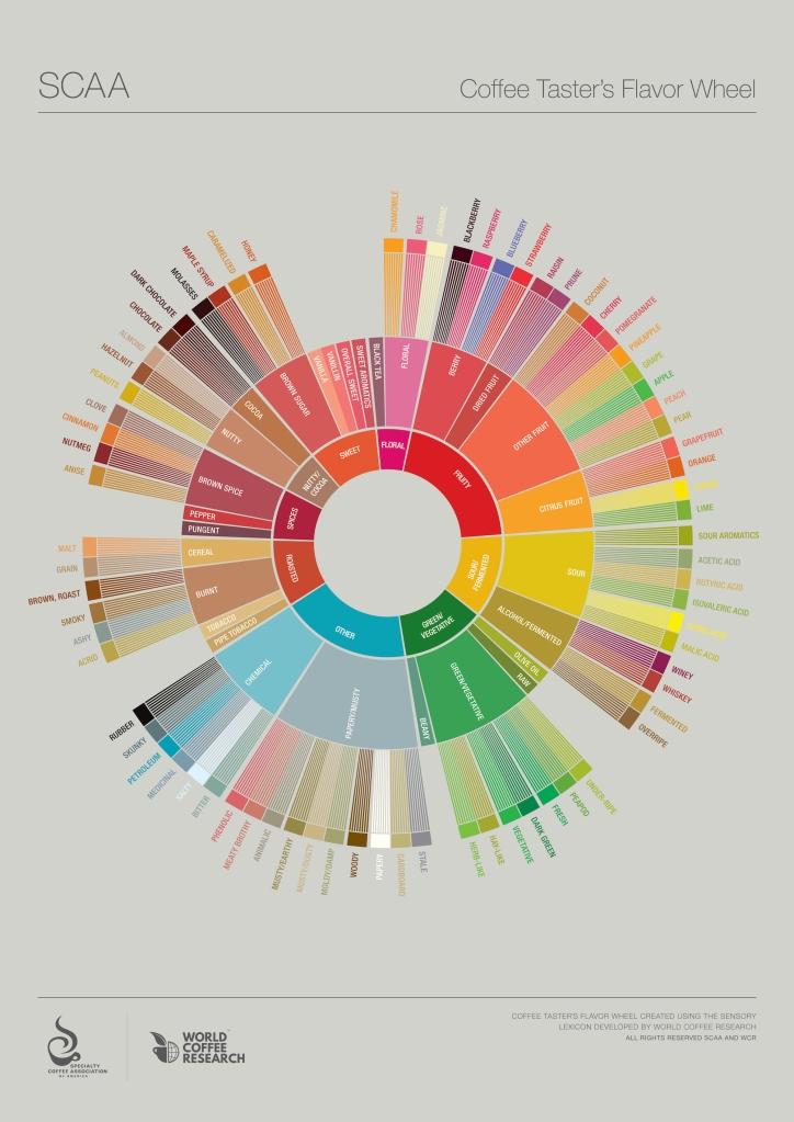 coffee-flavor-wheel